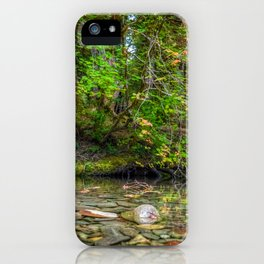 Morning in the Hoh Rain Forest 2 iPhone Case