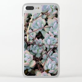 Pink Tips Succulents Clear iPhone Case