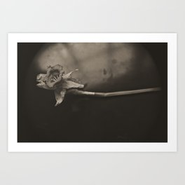 Gloom Daffy Art Print