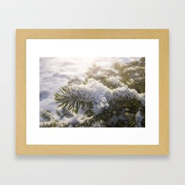 Christmas Snowflakes Framed Art Print