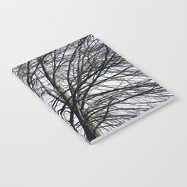 Stained Glass Tree Notebook