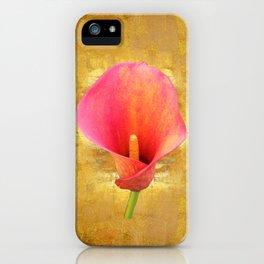 Reiterate iPhone Case