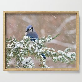 Winter Has Arrived (Blue Jay) Serving Tray