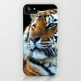 Sumatran Tiger - Panthera Tigris Sumatrae iPhone Case