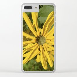 Green eyed Black Eyed Susan Clear iPhone Case