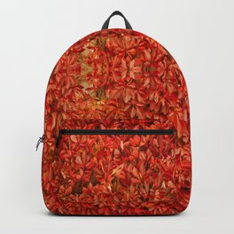 Autumn moods n.15 Backpack