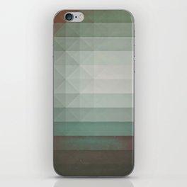 dryry ytyrnyl iPhone Skin