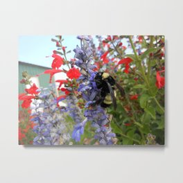 Happy Bumblebee  Metal Print