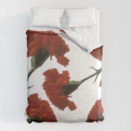 Clavel Comforters