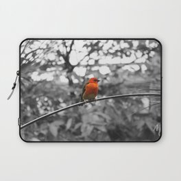 Red bird Laptop Sleeve
