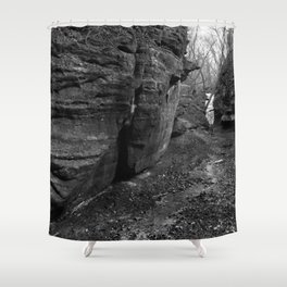 Spring and ice Shower Curtain
