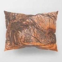 Wye Island Amber Trail Pillow Sham