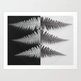 OPPOSITES LOVE - Ferns love Art Print