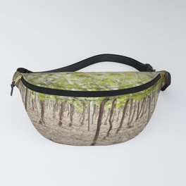 Vineyard Perspective Fanny Pack