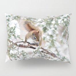 Seed Raider Pillow Sham