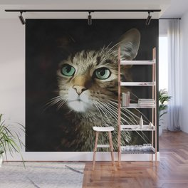 Tabby Cat With Green Eyes Isolated On Black Wall Mural