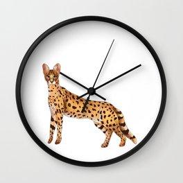 African wild cat. Serval  Wall Clock
