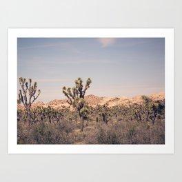 Scenes from Joshua Tree, No. 2 Art Print