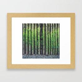 Green Pier Framed Art Print