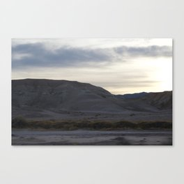 Death Valley Spring Bloom 2016 At Dusk With Yellow Plant Life Canvas Print