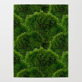 Moss - Green Luscious Mossy Texture - Full on Natural Moss Mounds- Earthy Greens -Turning Moss Green Poster