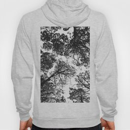 Forest landscape photography trees - black and white 1x1 Hoody