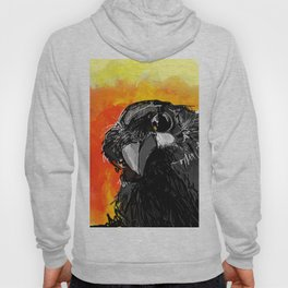 Curious Crow Hoody