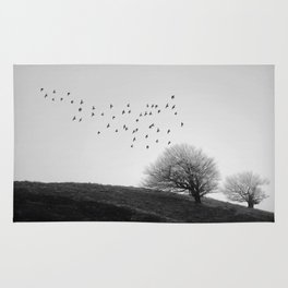 Blaen Bran, Cwmbran, South Wales, UK - 04 Rug