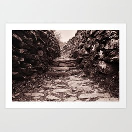 The path ahead Art Print