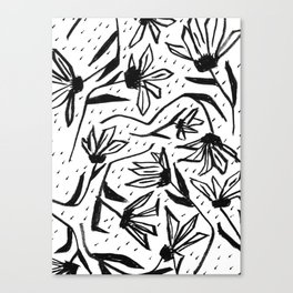 Black and White Echinacea Wildflower Drawing Canvas Print