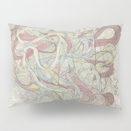 Beautiful Map of the Lower Mississippi River Pillow Sham
