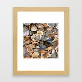Sable & Coquillages Framed Art Print