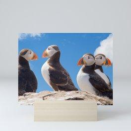 Puffins on a Rock Mini Art Print