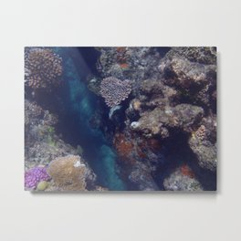The Heart of the Reef Metal Print
