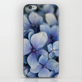 Hydrangea Close Up iPhone Skin