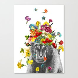 Gorilla in the Garden Canvas Print