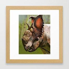 Pachyrhinosaurus Framed Art Print