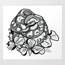 Python and iris flowers Art Print