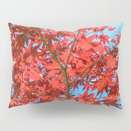 Reds of Fall - 1 Pillow Sham