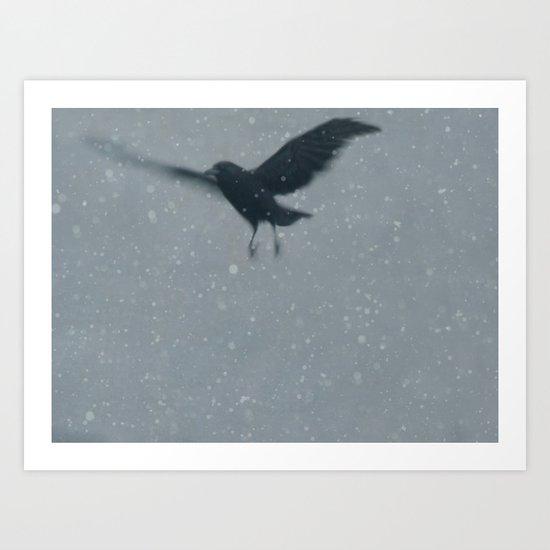 Snow Bird Art Print