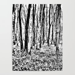 Fall in the Woods-b&w Poster