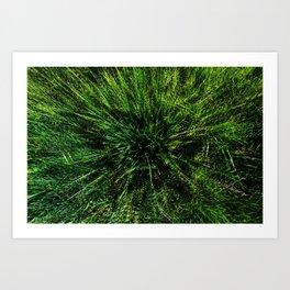 zieleń Art Print