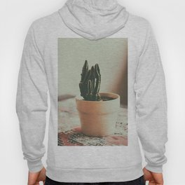 Coffee Shop Cactus Hoody