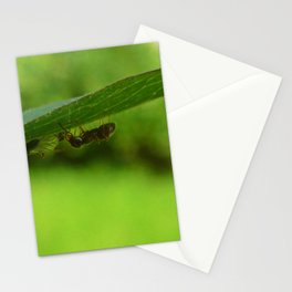 Bugs life Stationery Cards
