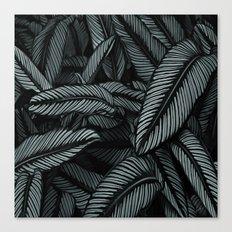 Night Tropic 534 Canvas Print