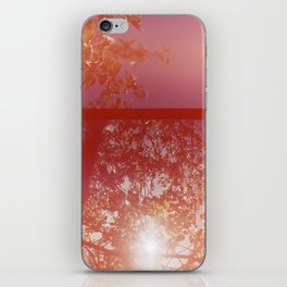 burst iPhone Skin