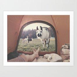 ALPACA  - CAMPING WITH FRIENDS Art Print