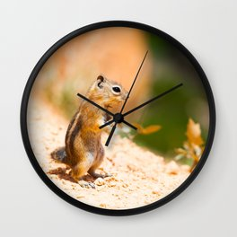 Tired Chipmunk Wall Clock