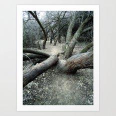 The Dead Canyon Art Print