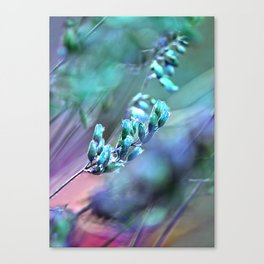 Mint Spangles no2 Canvas Print